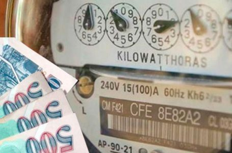 Diputado solicita que se suspenda el pago de energía eléctrica por un periodo de 4 meses.